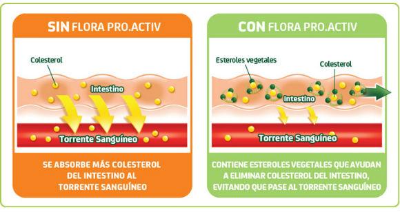 colesterol con y sin flora pro.activ
