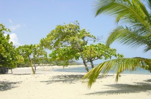 vitalidad en la playa
