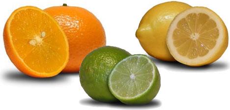 Resultado de imagen de limon y naranja